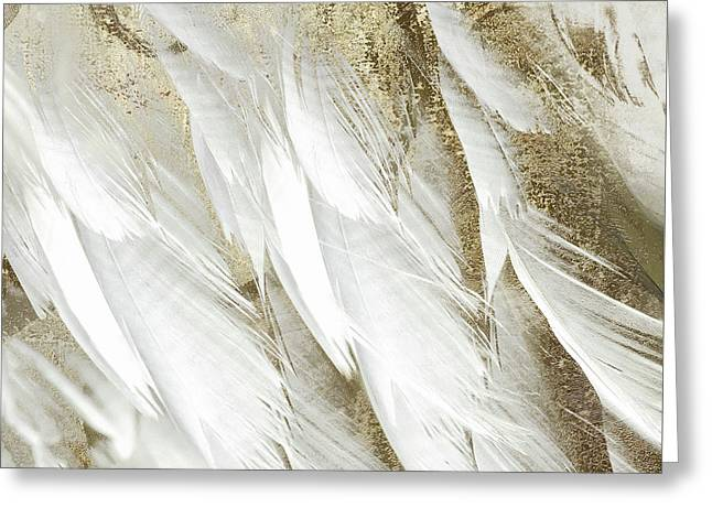 White Feathers With Gold Greeting Card by Mindy Sommers