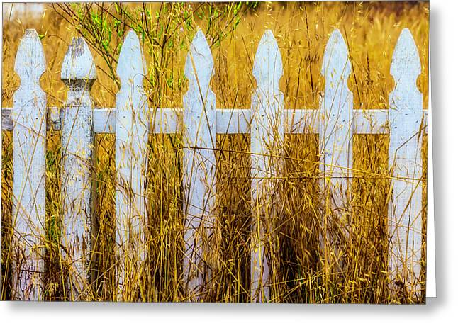 White Fence In The Weeds Greeting Card