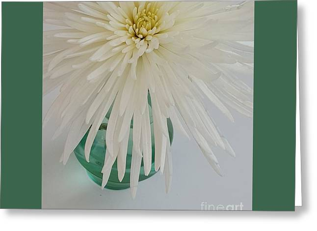 White Flower In A Vase By Jasna Gopic Greeting Card