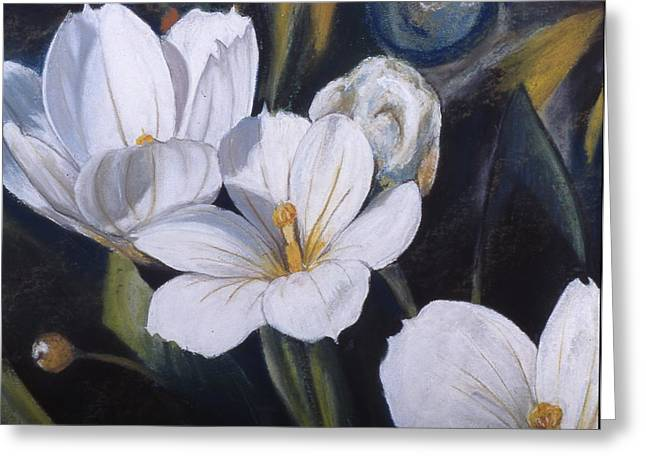 White Flower Study Greeting Card by Victoria Heryet