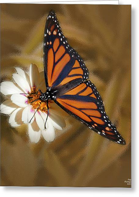 White Flower With Monarch Butterfly Greeting Card