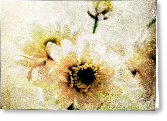 Daisies Mixed Media Greeting Cards - White Flowers Greeting Card by Linda Woods