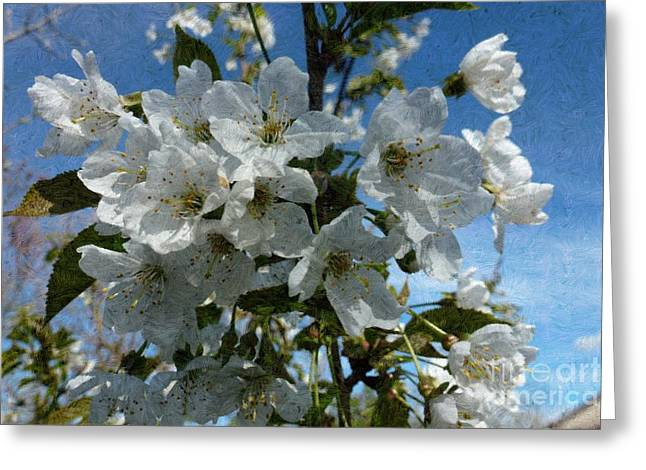 White Flowers - Variation 2 Greeting Card