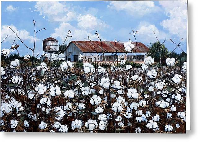 White Harvest Greeting Card by Cynara Shelton