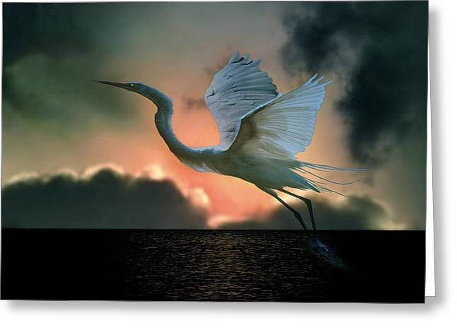 White Heron At Sundown Greeting Card