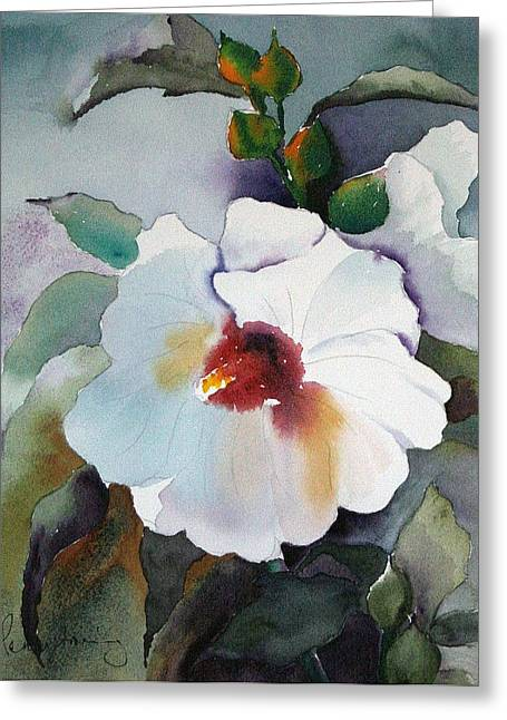 White Hibiscus Greeting Card