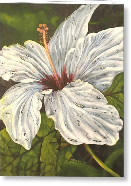 White Hibiscus Greeting Card