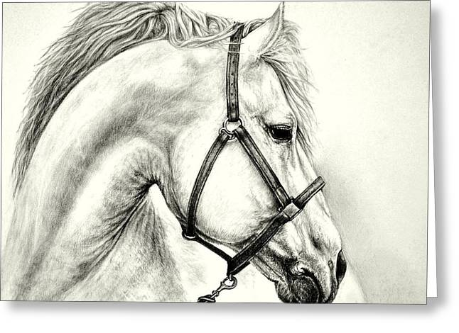 Greeting Card featuring the drawing White Horse by Heidi Kriel