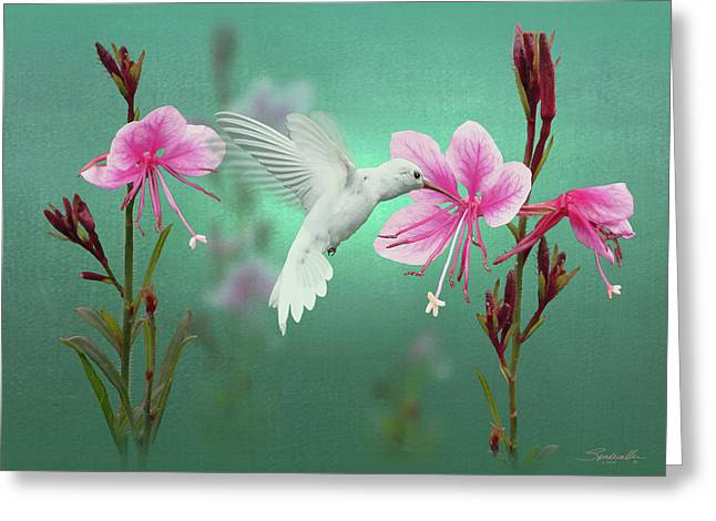 White Hummingbird And Pink Guara Greeting Card