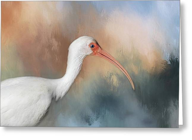 Greeting Card featuring the photograph White Ibis - 2 by Kim Hojnacki