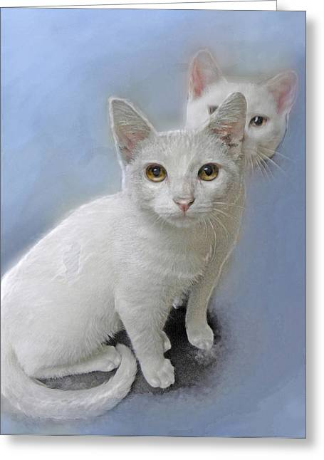 Kitten Mixed Media Greeting Cards - White Kittens Greeting Card by Jane Schnetlage