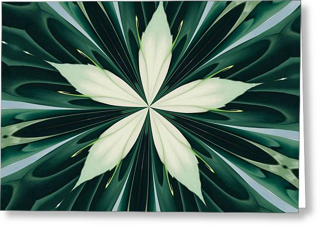 White Leaves In A Green Forest Kaleidoscope Greeting Card by Tracey Harrington-Simpson