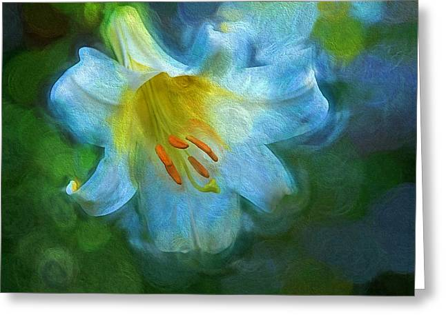 White Lily Obscure Greeting Card
