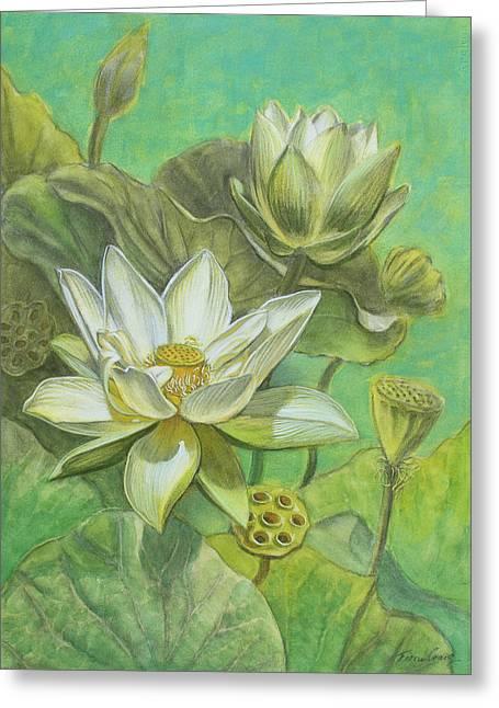 White Lotuses In Turquoise Lake Greeting Card