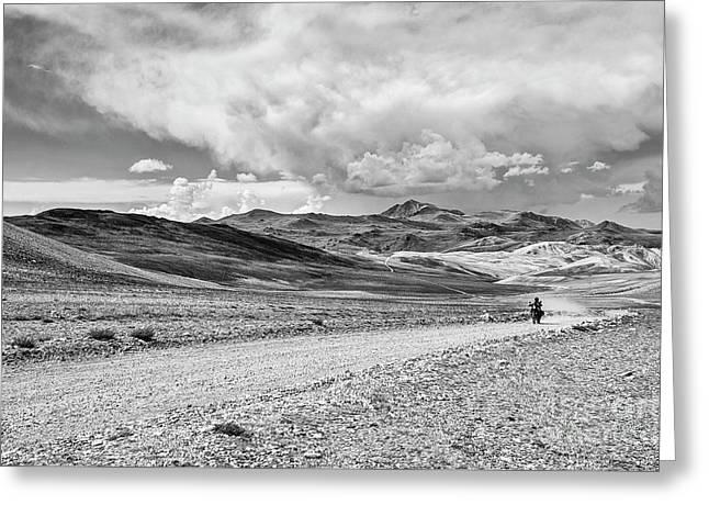 White Mountains Ride Greeting Card by Jamie Pham
