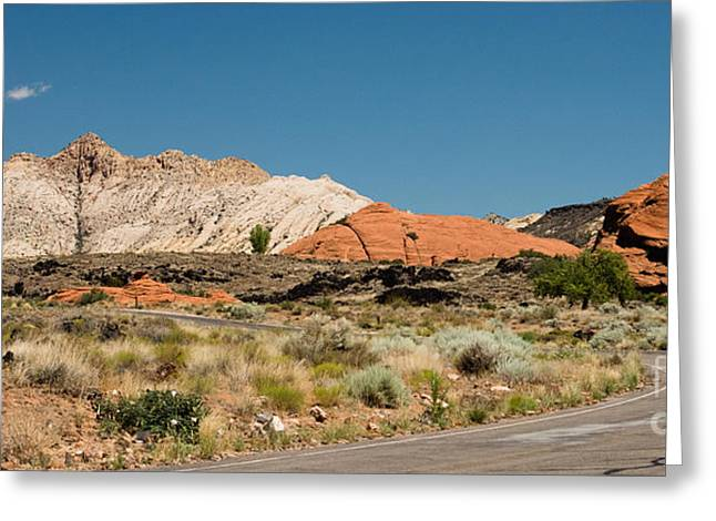 White Navajo Sandstone Petrified Sand Dune Greeting Card by MaryJane Armstrong