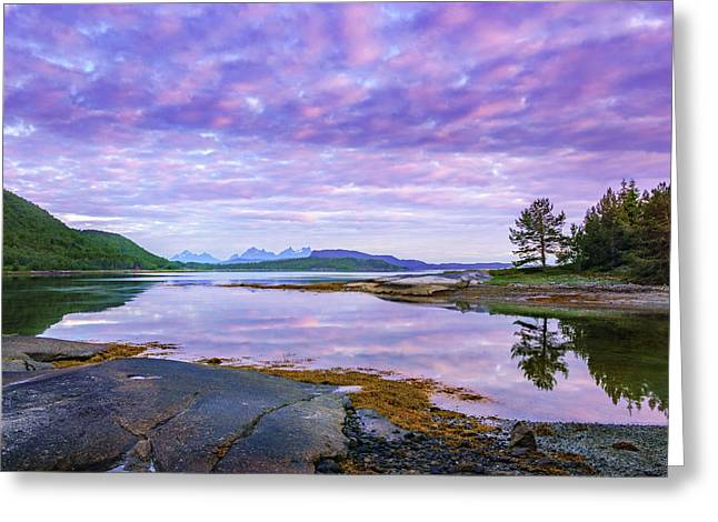 Greeting Card featuring the photograph White Night In Nordkilpollen Cove by Dmytro Korol
