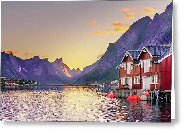 White Night In Reine Greeting Card by Dmytro Korol