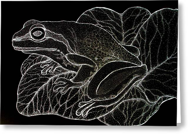 White On Black Frog Greeting Card by Nick Gustafson