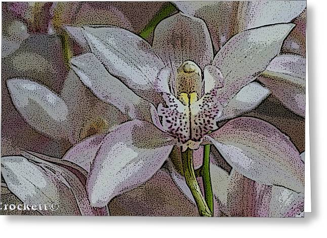 White Orchid Flower Greeting Card by Gary Crockett