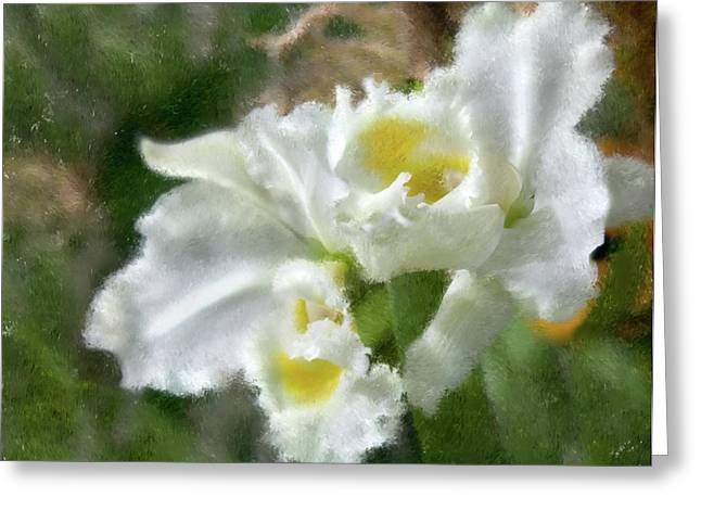 Greeting Card featuring the photograph White Orchid by John Hix