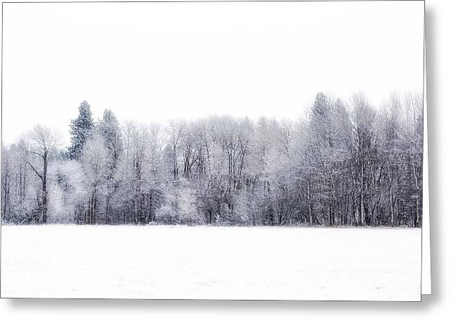 White Out Greeting Card by Dennis Adams