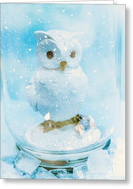 White Owl In Snow Globe Greeting Card