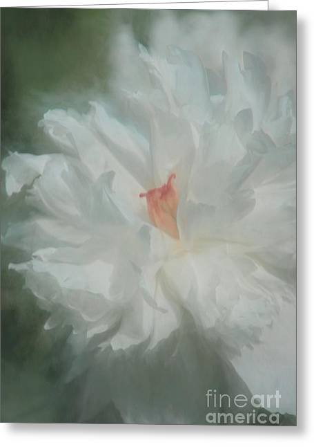 Greeting Card featuring the photograph White Peony by Benanne Stiens