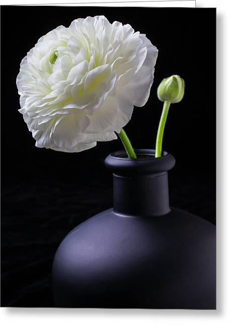 White Ranunculus In Black Vase Greeting Card