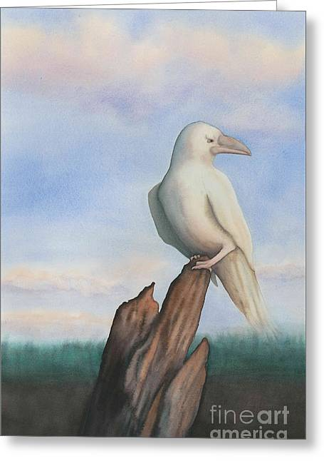 White Raven Greeting Card by Anne Havard