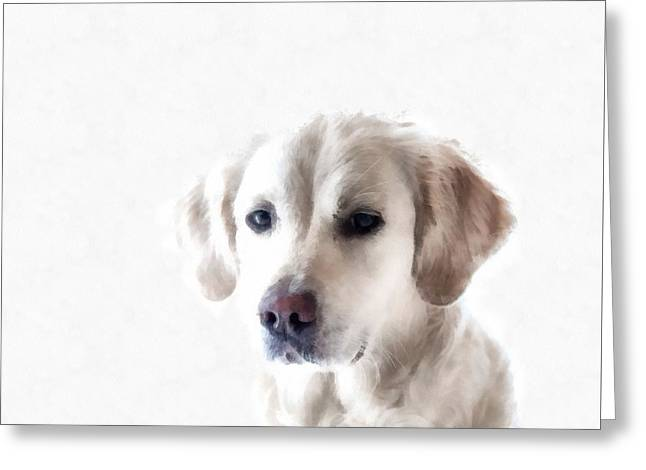 White Retriever Puppy Dog Painting  Greeting Card