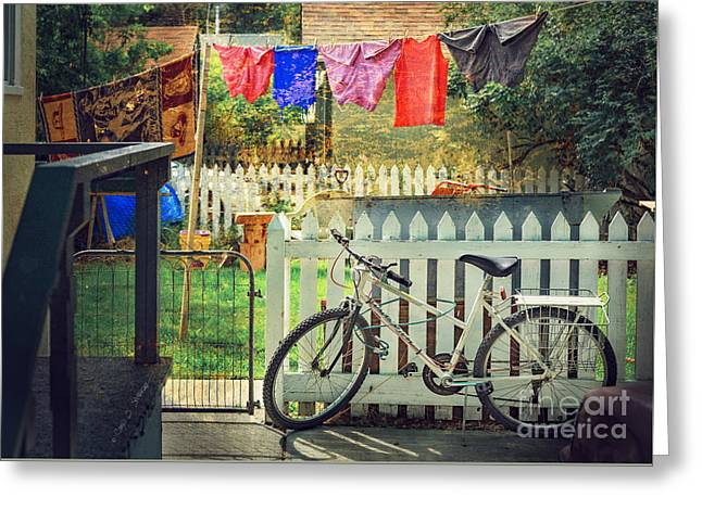 White River Bicycle Greeting Card by Craig J Satterlee