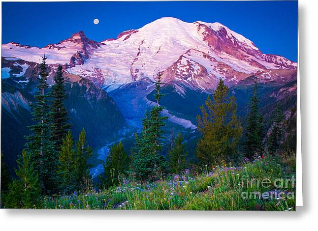White River Predawn Greeting Card by Inge Johnsson