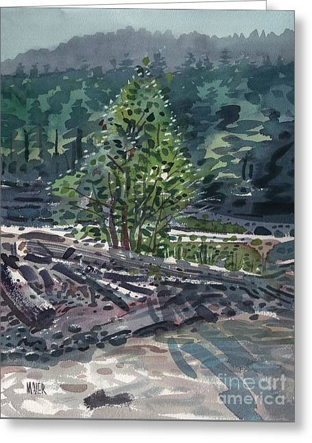 White River Sandbar Greeting Card by Donald Maier