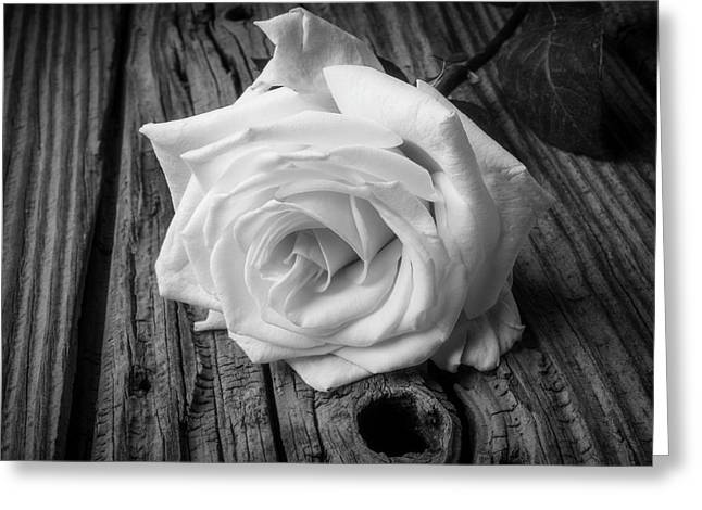 White Rose On Wood Greeting Card by Garry Gay