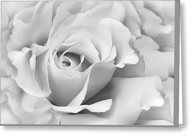 Greeting Card featuring the photograph White Rose Ruffles Monochrome by Jennie Marie Schell