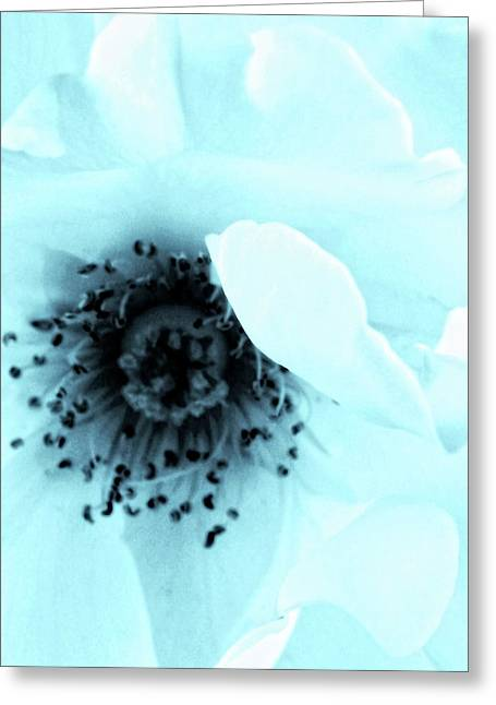 A Lighter Shade Of Pale Greeting Card by William Dey