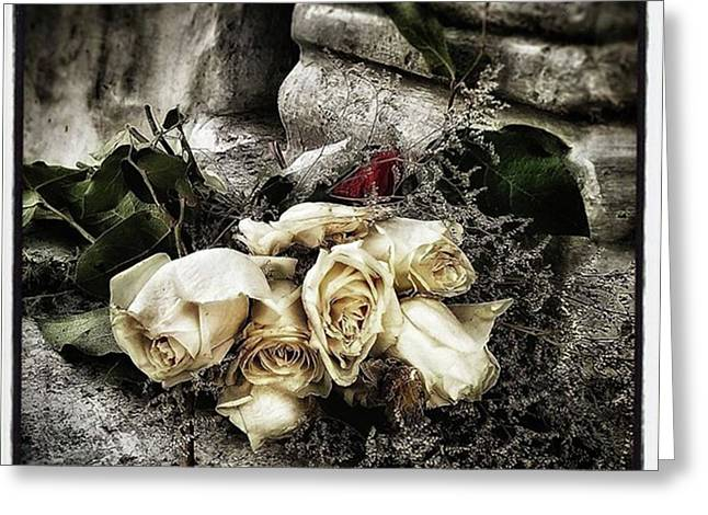 White Roses For Mother Mary. Devotees Greeting Card by Mr Photojimsf