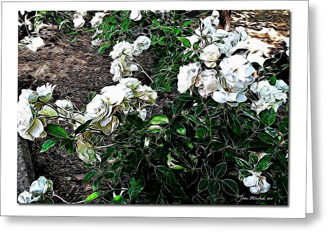 Greeting Card featuring the photograph White Roses by Joan  Minchak
