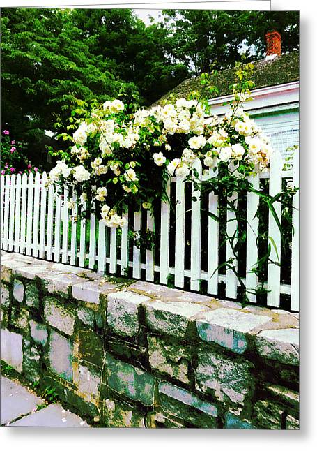 White Roses On A Picket Fence Greeting Card by Susan Savad