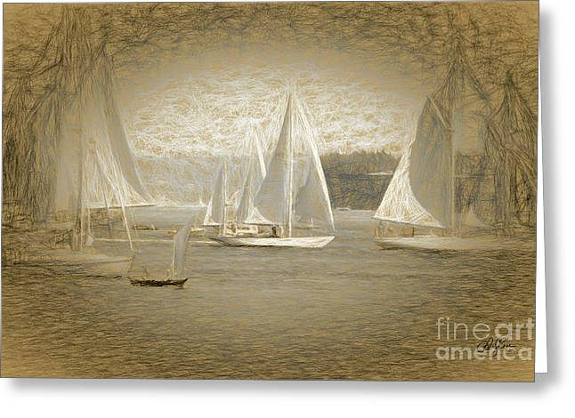 White Sails On Admiralty Inlet Greeting Card by Cheryl Rose
