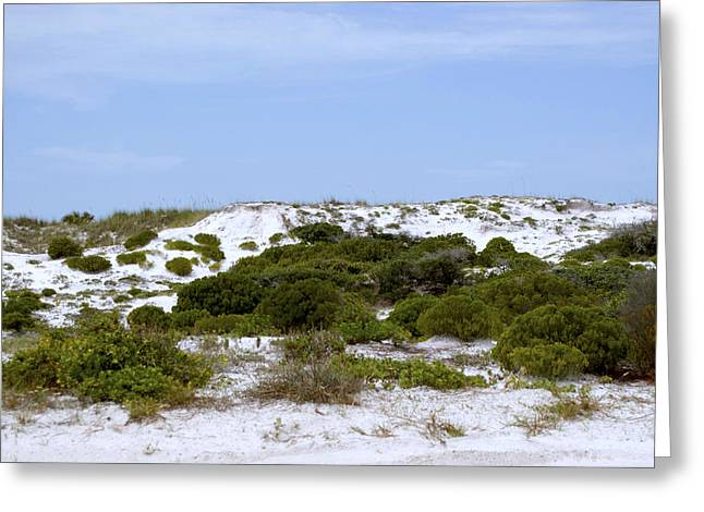 White Sand Dunes And Blue Skies Greeting Card by Tina B Hamilton