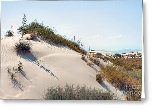 White Sands Icing Greeting Card by John Kelly