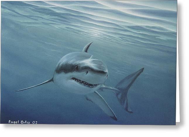 White Shark Greeting Card by Angel Ortiz
