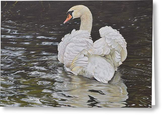 Greeting Card featuring the painting White Swan by Alan M Hunt