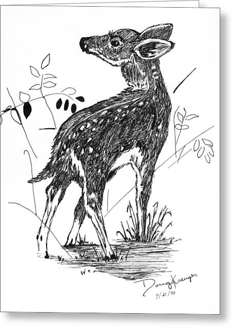 White-tail Fawn -pen And Ink Greeting Card