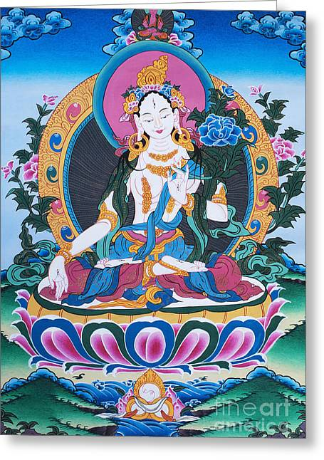 White Tara Thangka Greeting Card by Tim Gainey