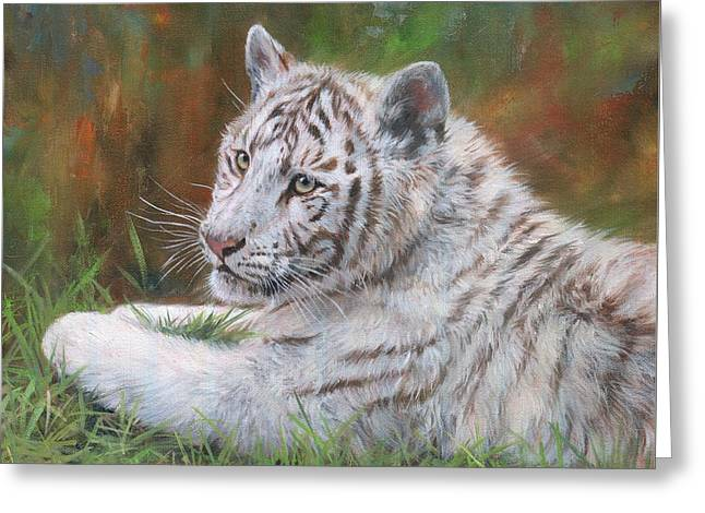White Tiger Cub 2 Greeting Card by David Stribbling