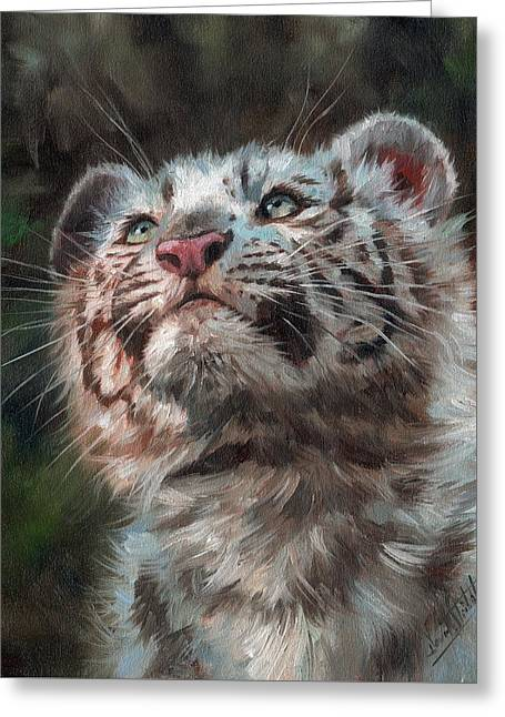 White Tiger Cub Greeting Card by David Stribbling