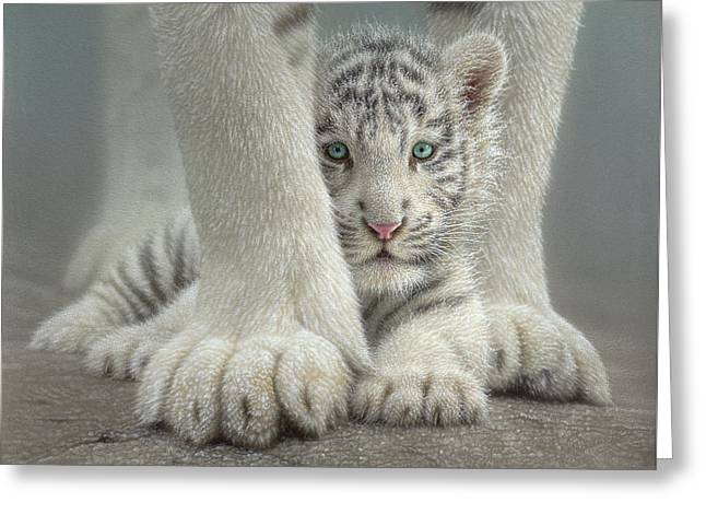 White Tiger Cub - Sheltered Greeting Card